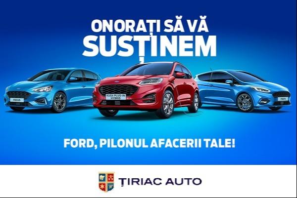 Autoturisme si vehicule comerciale - 6 luni amanarea ratelor