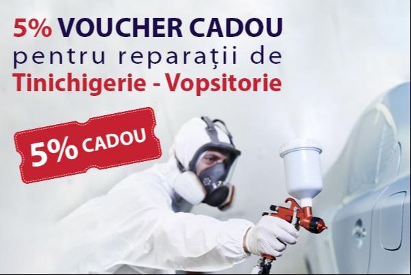 Reparatie tinichigerie-vopsitorie: VOUCHER CADOU 5%*